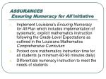 assurances ensuring numeracy for all initiative