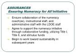 assurances ensuring numeracy for all initiative5