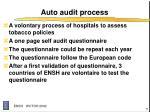 auto audit process