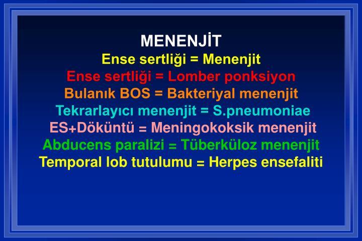 MENENJİT