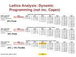 lattice analysis dynamic programming not inc capex