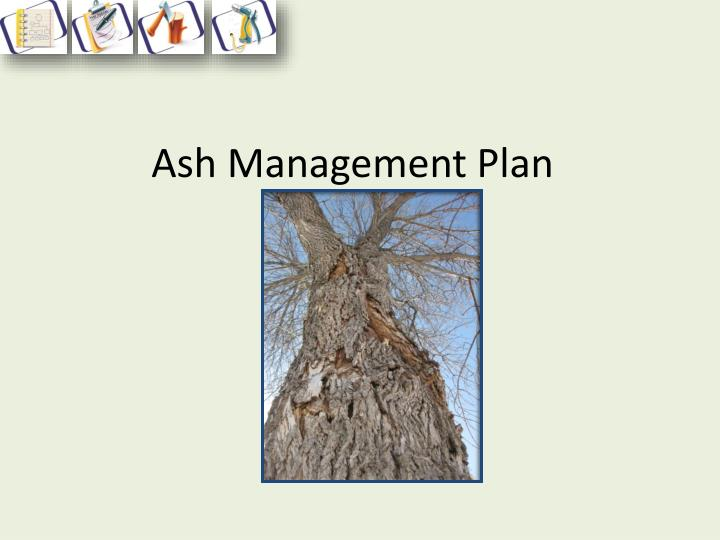 Ash Management Plan