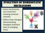 evolution of homeostatic mechanisms