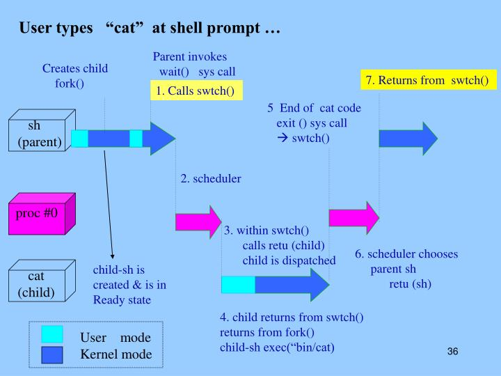 """User types   """"cat""""  at shell prompt …"""
