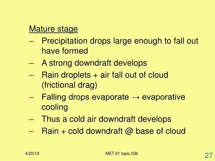 Mature stage