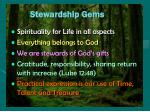 stewardship gems