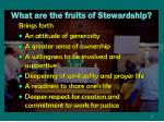 what are the fruits of stewardship