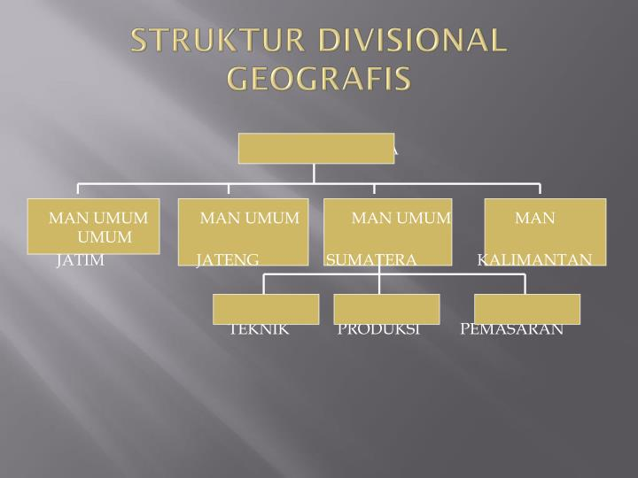 STRUKTUR DIVISIONAL GEOGRAFIS
