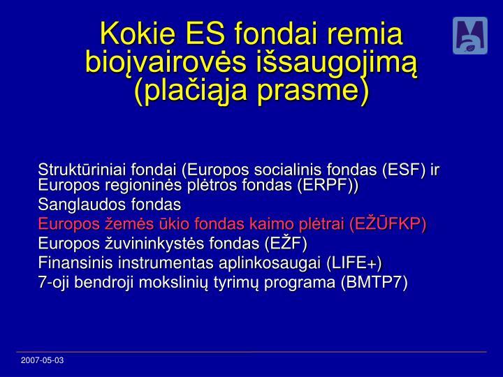 Struktūriniai fondai (Europos socialinis fondas (ESF) ir Europos regioninės plėtros fondas (ERPF))