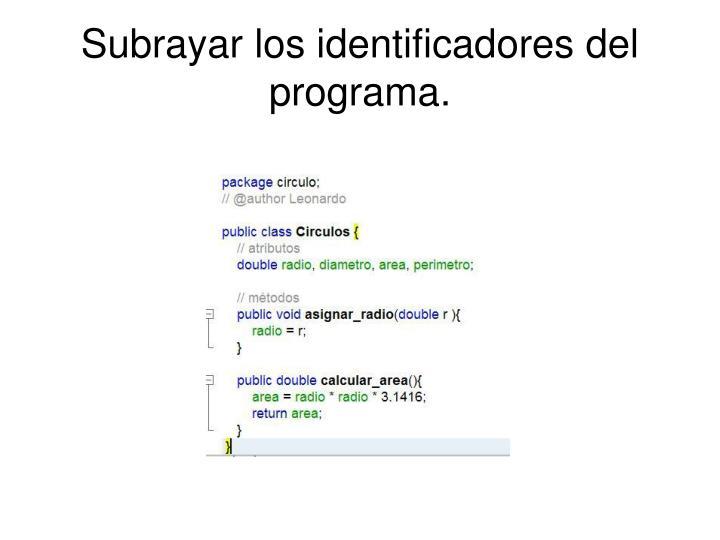 Subrayar los identificadores del programa.