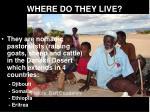 where do they live