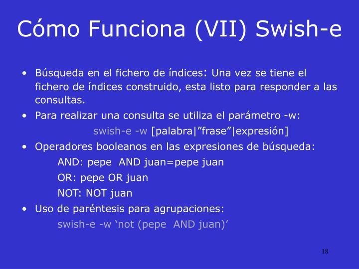 Cómo Funciona (VII) Swish-e