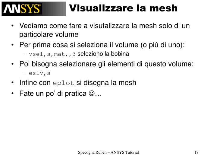 Visualizzare la mesh