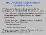 bmj convective parameterization in the nam model