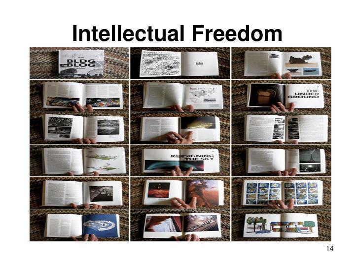 intellectual freedom Intellectual freedom encompasses the freedom to hold, receive and disseminate ideas without restriction viewed as an integral component of a democratic society, intellectual freedom protect's.