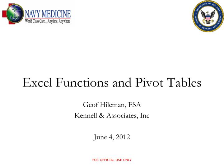 excel functions and pivot tables n.