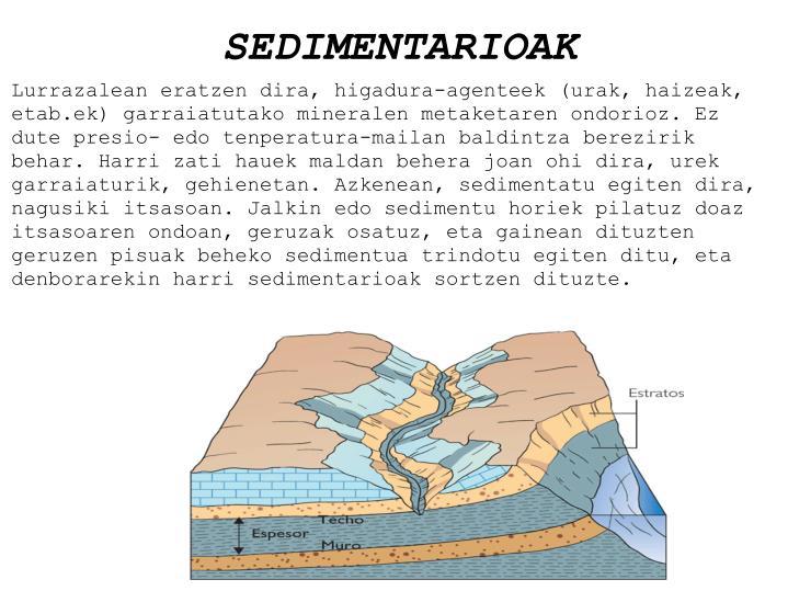 Sedimentarioak