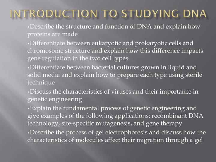 Introduction to studying dna