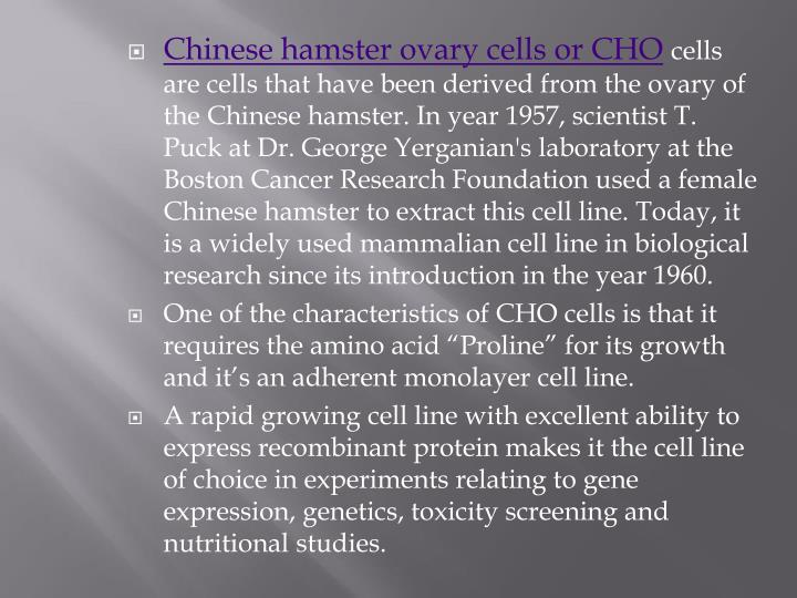 Chinese hamster ovary cells or CHO
