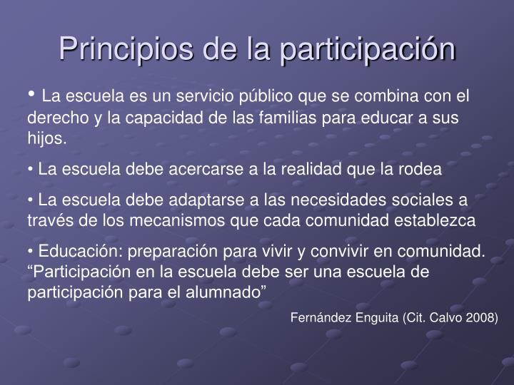Principios de la participación