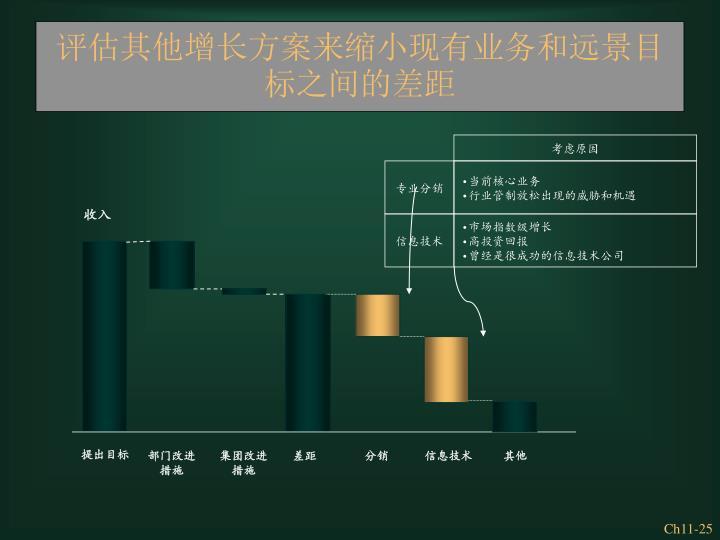 评估其他增长方案来缩小现有业务和远景目标之间的差距