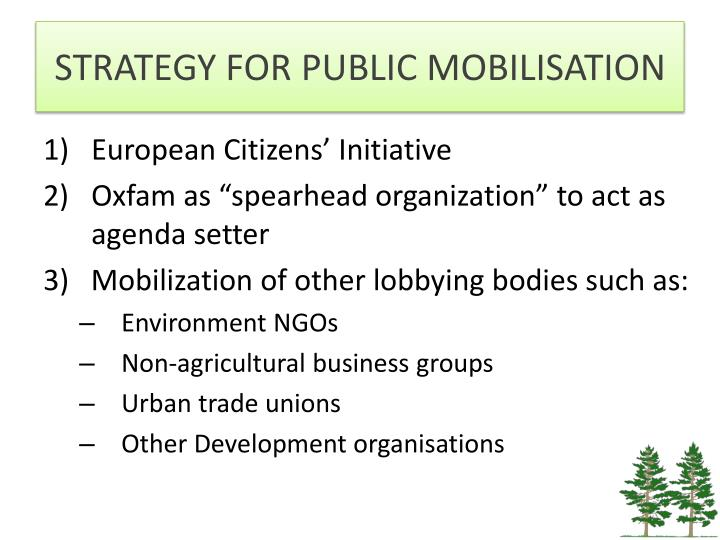 STRATEGY FOR PUBLIC MOBILISATION