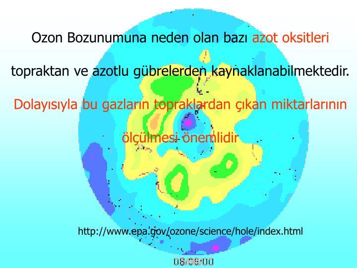 Ozon Bozunumuna neden olan bazı