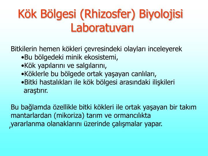 Kök Bölgesi (Rhizosfer) Biyolojisi