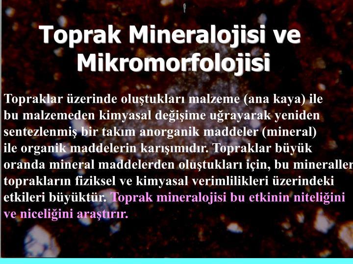 Toprak Mineralojisi ve