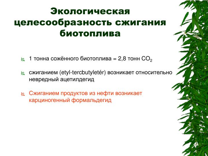 Экологическая целесообразность сжигания биотоплива