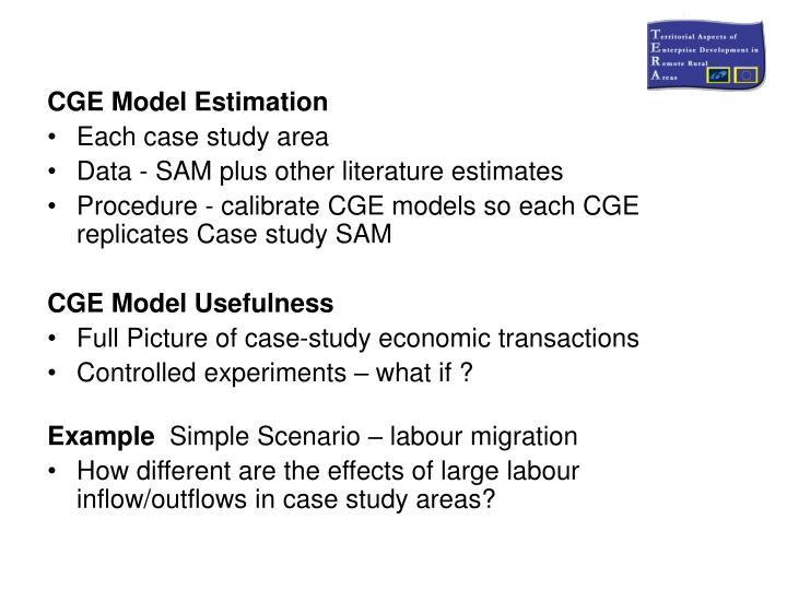 CGE Model Estimation