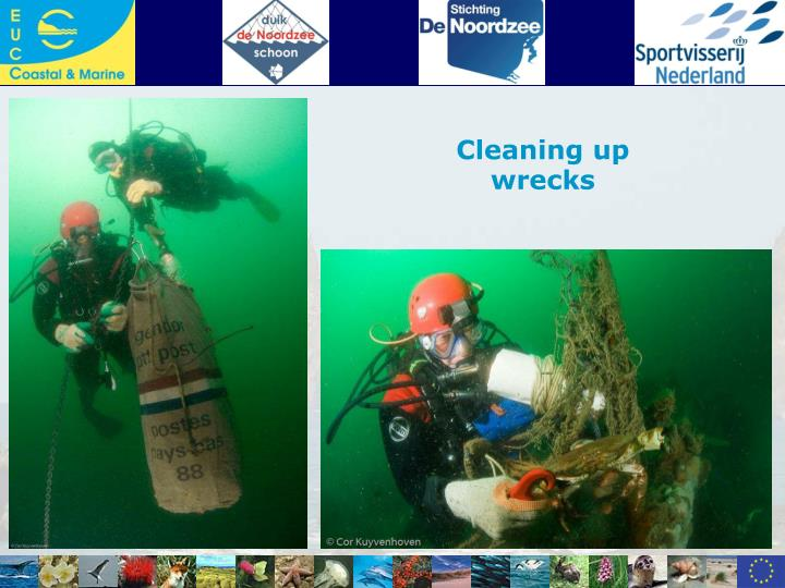 Cleaning up wrecks