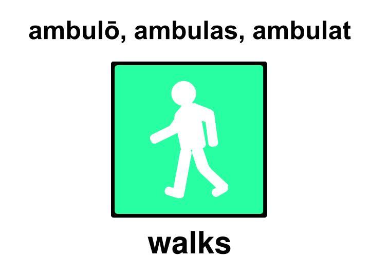 ambulō, ambulas, ambulat