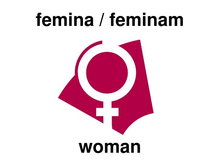 femina / feminam