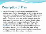 description of plan