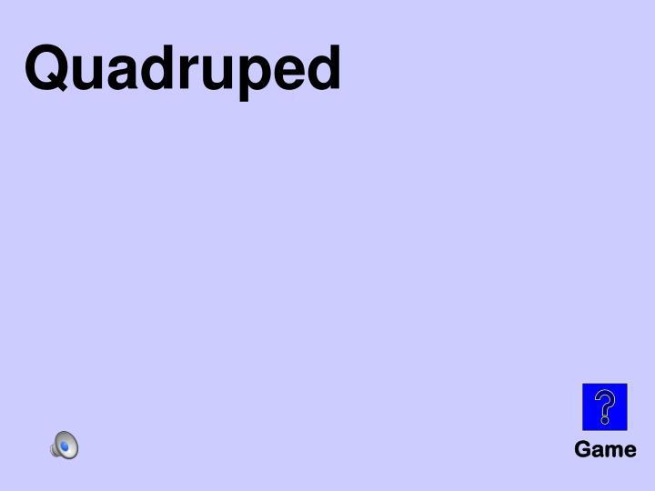 Quadruped