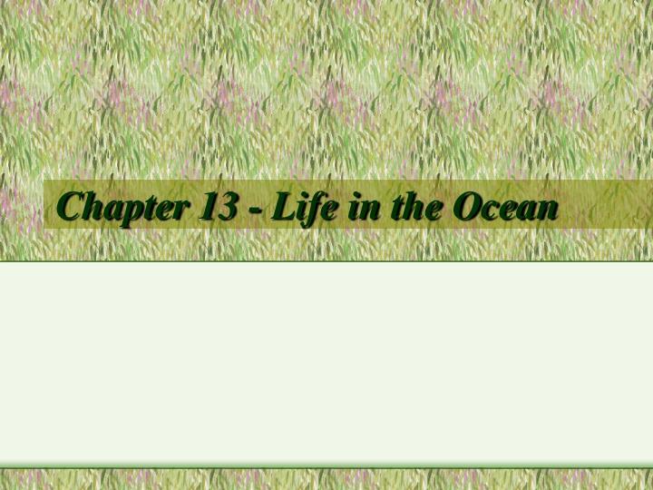 chapter 13 life in the ocean n.