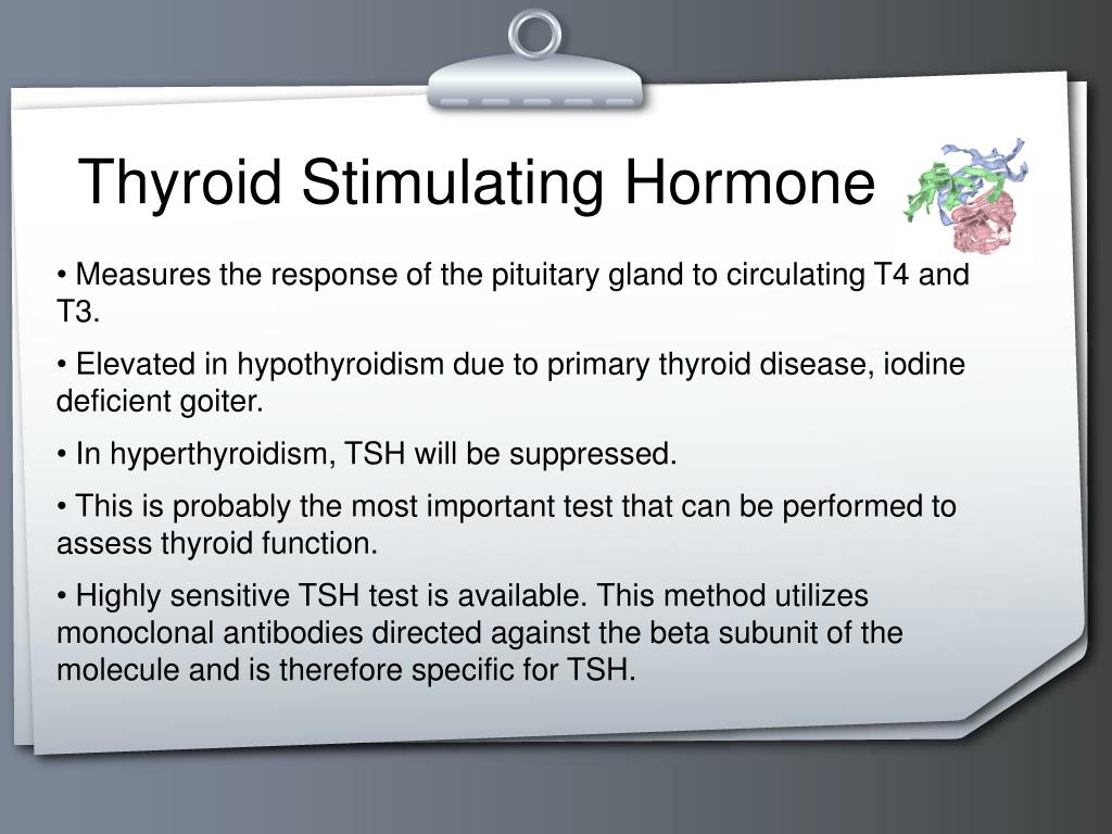 PPT - Thyroid Function Tests PowerPoint Presentation - ID:4089389