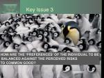key issue 3