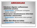 arriskuak1