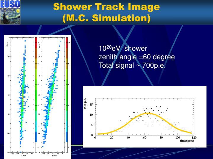 Shower Track Image