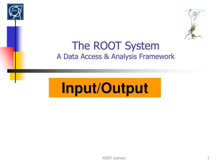 the root system a data access analysis framework n.