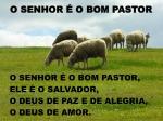 o senhor o bom pastor