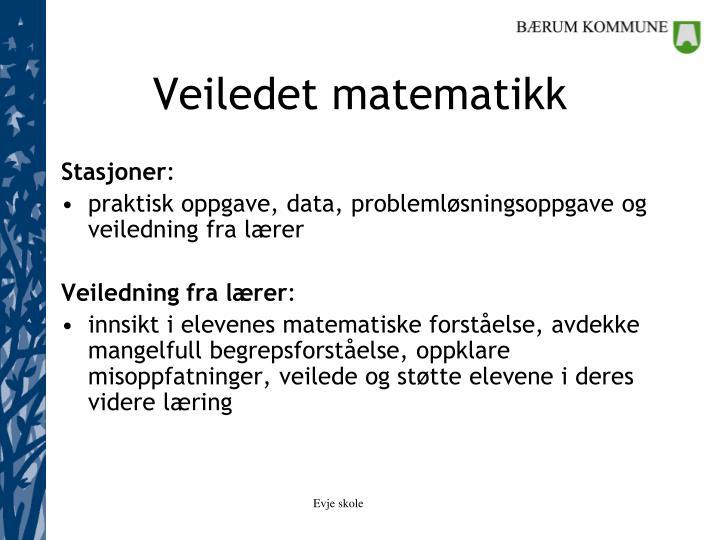 Veiledet matematikk
