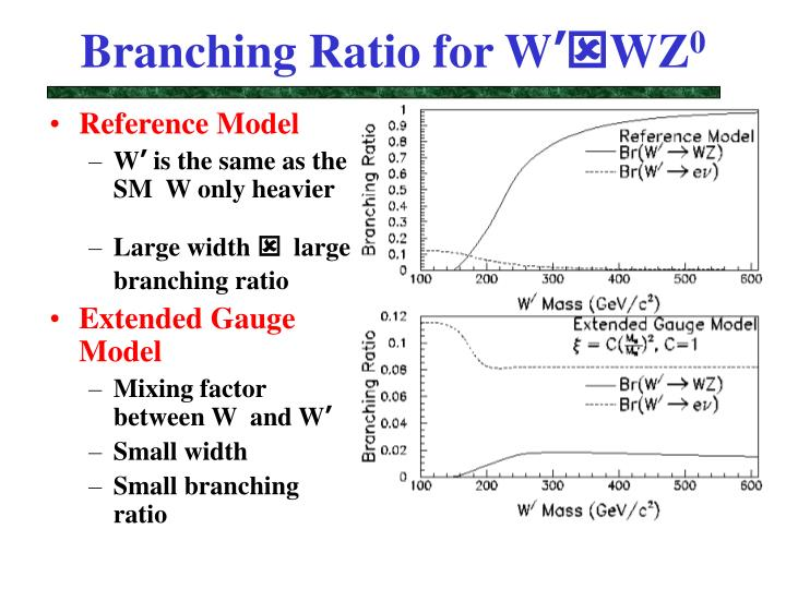 Branching Ratio for W