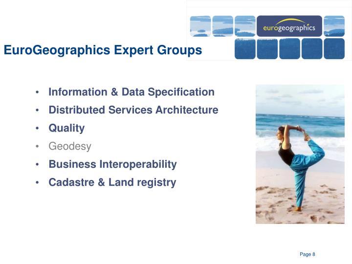 EuroGeographics Expert Groups