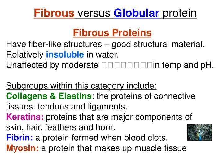 Fibrous
