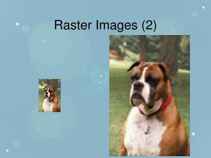 Raster Images (2)
