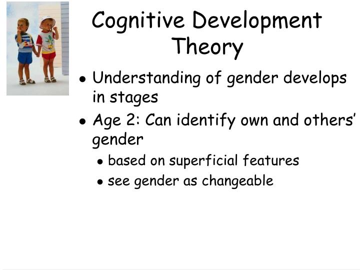 cognitive development theory gender