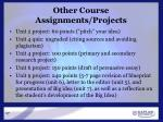 other course assignments projects
